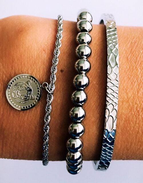Armbanden set zilver leopard