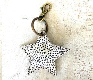 Sleutelhanger star dot